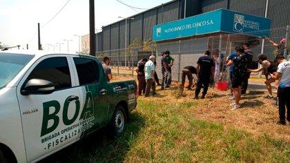 El animal fue asistido por un equipo de la Brigada Operativa Ambiental (BOA)(@Nora Cano)