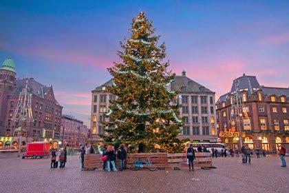 Ámsterdam optó por un árbol clásico, natural y simple, con ornamentaciones sobrias