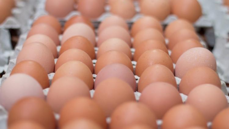 El precio pagado al productor no subió desde octubre de 2019 con un incremento de costos promedio de entre el 15% y el 20% a nivel nacional