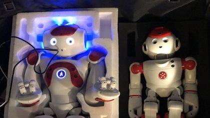 Los robots Neo y Pepper de SoftBank se preparan para la demostración de hackeo En los estudios de Infobae