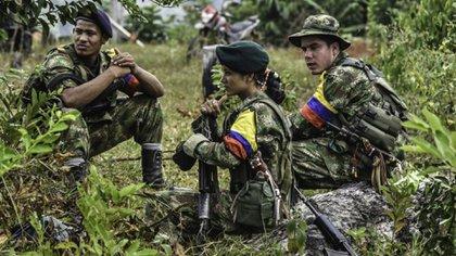 Hay unos 2.800 exguerrilleros de las FARC en disidencias, segun Insight Crime.