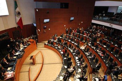 La Comisión Permanente se está reuniendo en el Senado de la República (Foto: EFE/Mario Guzmán/Archivo).