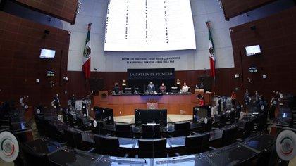 La reforma propuesta por el presidente López Obrador avanzó sin problemas en el Senado a pesar de las críticas (Foto: Cortesía Senado)