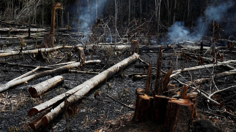 Una de las zonas afectadas (Reuters/ spotifysBruno Kelly)