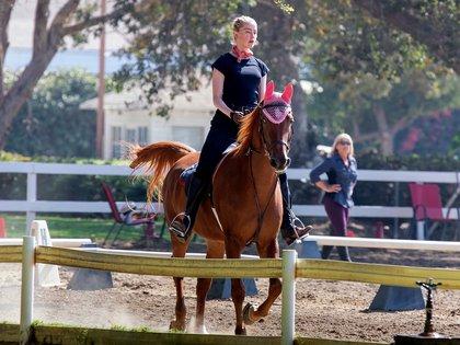 Amber Heard practicó equitación en Los Ángeles, California. La estrella de Aquaman ha estado tomando lecciones desde hace un tiempo y está logrando ser toda una experta. En esta oportunidad, la actriz lució una remera, unos pantalones de montar y botas negras. Completó el look con un pañuelo atado alrededor de su cuello (Foto: Backgrid / The Grosby Group)