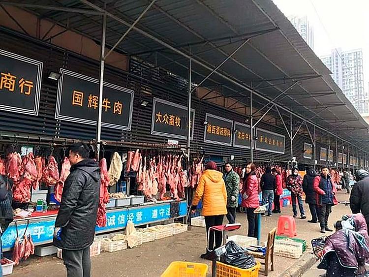 Tras el cierre temporario, y luego por tiempo indeterminado, de estos mercados, la venta de vida silvestre se trasladó a internet.