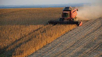 La siembre de la nueva campaña de soja de los Estados Unidos sigue con retrasos