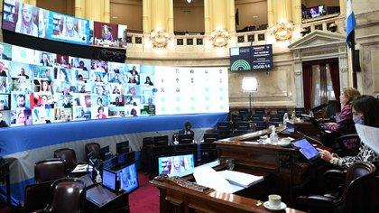 Sesión Especial remota del Honorable Senado de la Nación, en la que se da tratamiento a los Proyectos de Moratoria impositiva, previsional y aduanera, y de Asistencia al Turismo, el  13 de Agosto de 2020, en Buenos Aires, Argentina. (Foto: CELESTE SALGUERO / COMUNICACIÓN SENADO).