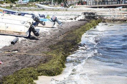 Puerto Juárez, Cancún, Quintana Roo. 15 de abril de 2021.