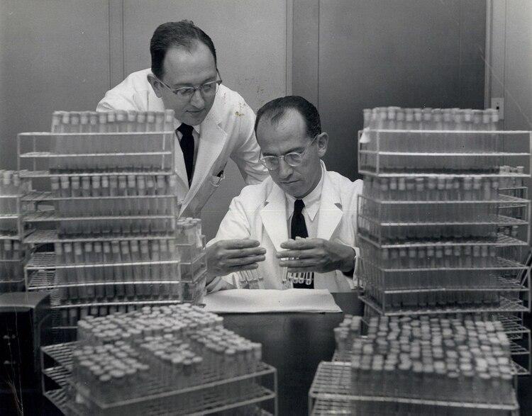 Jonas Salk y su asistente J.S. Youngner en el laboratorio de la Fundación Nacional para la Parálisis Infantil (Keystone Pictures USA/Shutterstock)