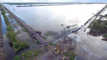 Frente al complejo panorama que se vive por las inundaciones en variasprovincias, el Senasa lanzó una serie de recomendaciones