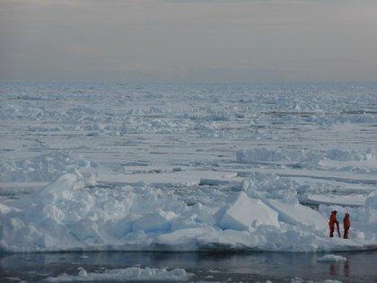 Dos investigadores en el Ártico (Dirk Notz)