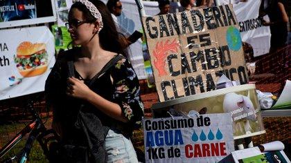 Cientos de jóvenes se movilizaron al Congreso argentino (Fotos: Nicolás Stulberg)