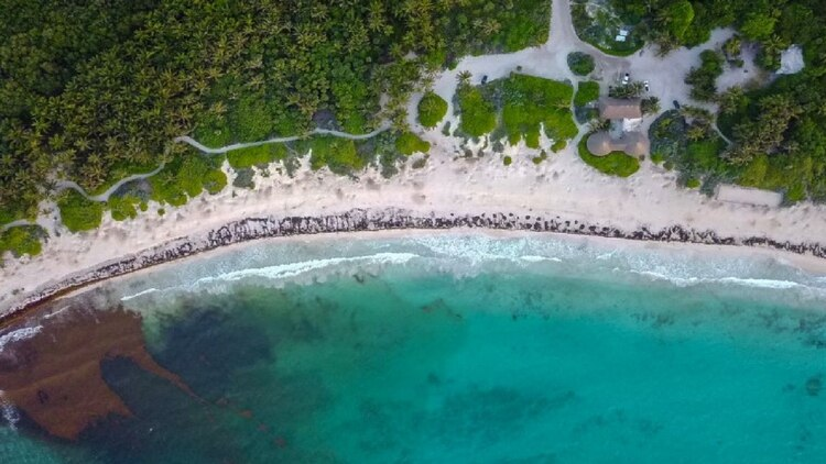 Cuenta con una extensión de 362 hectáreas de manglares y cenotes (Foto: Especial)