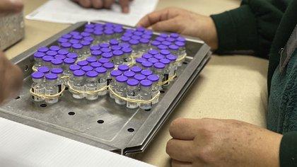El inicio de la inoculación de los cerca de 15 millones de adultos mayores fue proyectado para finales de enero (Foto: Twitter@imssedomexpte)