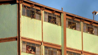 La Ley de Amnistía contemplará a la mujeres imputadas por interrumpir su embarazo. (Foto: EFE)