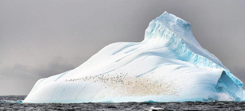 Iceberg poblado por pingüinos en la Antártida (Europa Press)