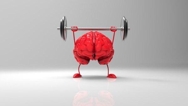 Leer, hacer vida saludable y mantener el cerebro activo ayuda a la prevención (iStock)