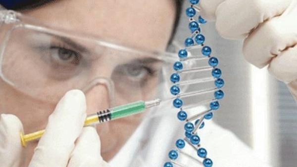 Estudian aprobar la primera terapia génica en Estados Unidos para una enfermedad hereditaria (FDA)