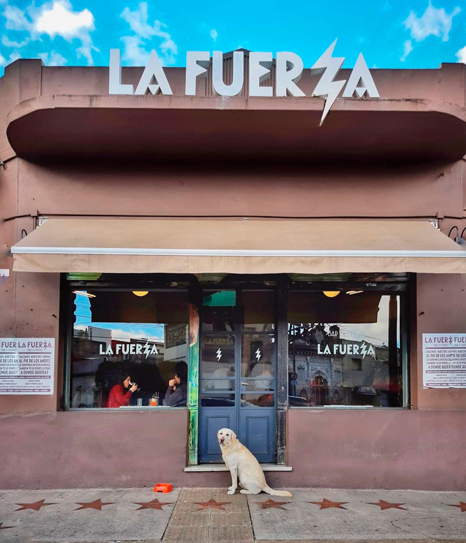 Los principales nombres del país en bares, restaurantes y vinos se unieron para crear La Fuerza (Instagram @jonaspapier)