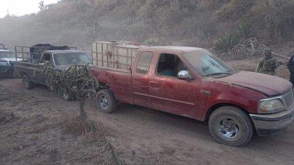El decomiso se llevó a cabo en la zona conocida como El Sedo: se encuentra en los límites con la comunidad de Benito Juárez, del municipio Mineral del Chico (Foto: PMT)