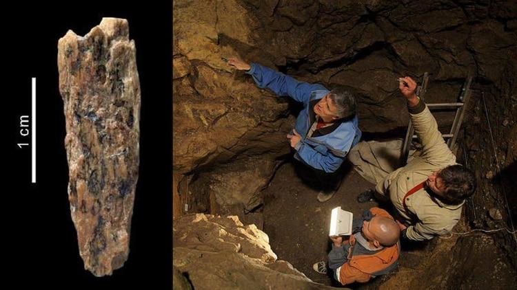 En Siberia un pequeño fósil permitió identificar a una descendientede unamadre neandertal y unpadre denisovano.