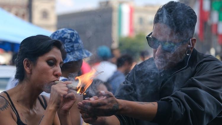 La SCJN allanó el camino para la eventual legalización de la marihuana (Foto: Cuartoscuro)