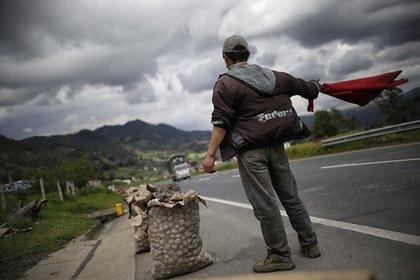 Según han informado campesinos que se encuentran en Boyacá, la crisis de la papa ha seguido empeorando. - Colprensa.