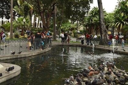 Imágenes de Guayaquil, la Perla del Pacífico (Crédito: Prensa Municipio de Guayaquil)
