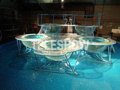 La estructura del Aquadance: cinco bachas, en una pileta de 180 metros cuadrados