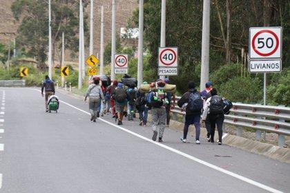 Fotografía del 13 de mayo de 2020 que muestra a un grupo de migrantes venezolanos que camina por una carretera cercana a la frontera con Colombia, poco antes de introducirse al bosque para cruzar el río Carchi por uno de los pasos ilegales en el sector del Complejo de Rumichaca y el Brinco, a pocos metros del puente internacional.EFE/ Xavier Montalvo