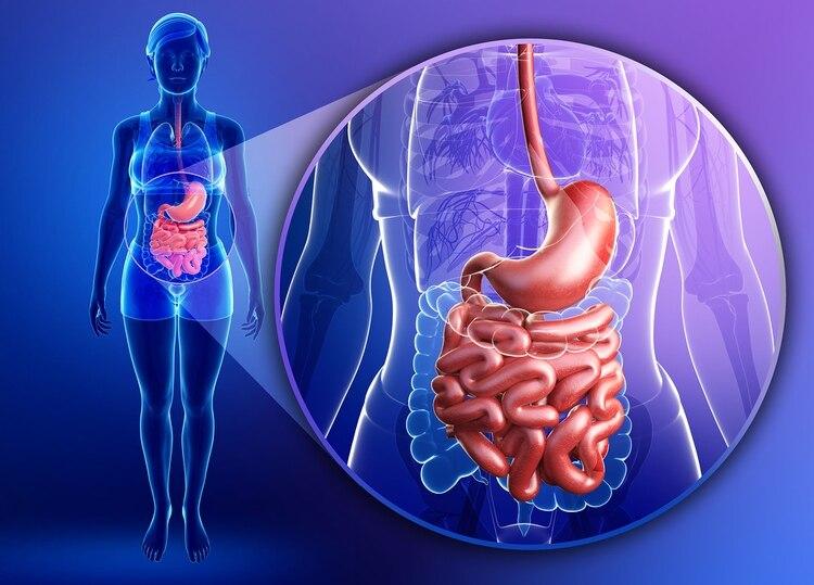 La diverticulitis de colon es la tercera causa de enfermedad gastrointestinal que requiere de internación y también es la principal indicación de cirugía de colon elegida (Getty)