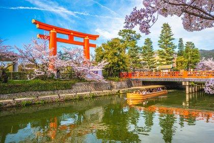 Abril marca el comienzo de la temporada de los cerezos en flor en Japón (Shutterstock)