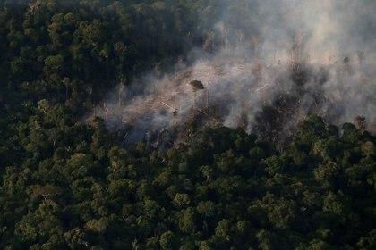 Incendio en el Amazonas. REUTERS/Ricardo Moraes/File Photo