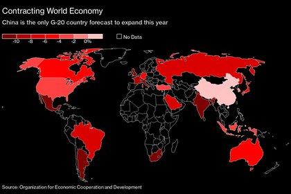 China es el único de los países del G20 que crece este año, según las previsiones de la OCDE