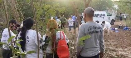 Hallaron los restos de al menos tres personas Foto: (Sabuesos guerreras)