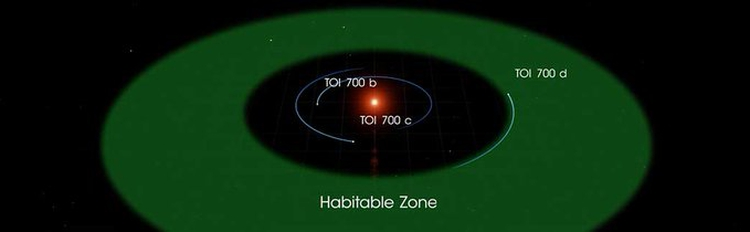 La ubicación del exoplaneta TOI 700 d (Twitter NASA Exoplanets/@NASAExoplanets)