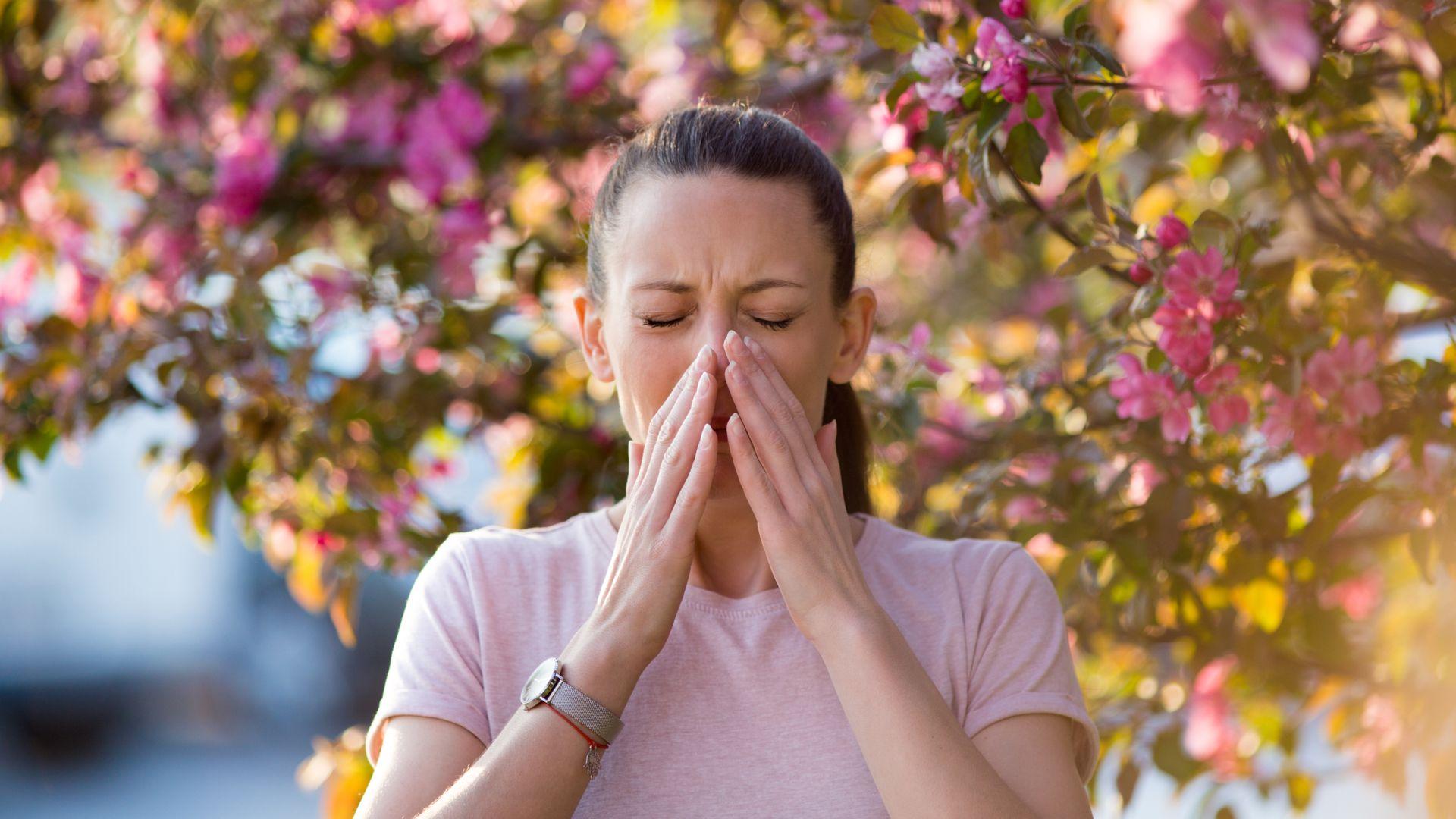 Uno de los factores que puede producir alergias es la liberación de polen de los árboles, moho y otros alérgenos ambientales que viajan por el aire (Shutterstock)