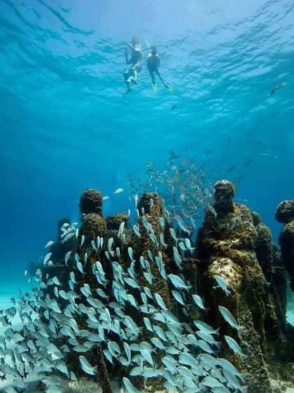 Con el objetivo de concientizar sobre los recursos naturales de la zona, frente a un crecimiento desmedido y acelerado, se ofrecen recorridos guiados, actividades ecológicas y talleres (@visitcancun)