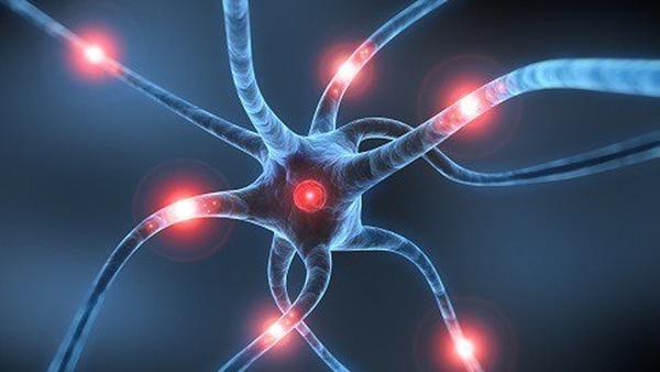 Cada hora el cerebro pierde 2 millones de neuronas ante un ACV