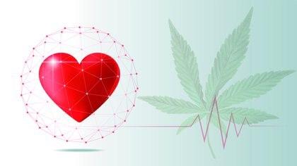 Si bien actualmente prima la tendencia a la despenalización de la droga, algunos cardiólogos advierten sobre sus efectos adversos