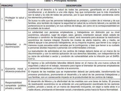 Lineamientos Técnicos Específicos para la Reapertura de las Actividades Económicas (Foto: SSA)