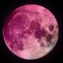 De qué se trata el curioso fenómeno de la superluna rosa