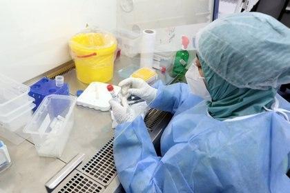 Anticuerpos de variante sudafricana de coronavirus ofrecen protección cruzada - EFE/EPA/MOHAMED MESSARA/Archivo