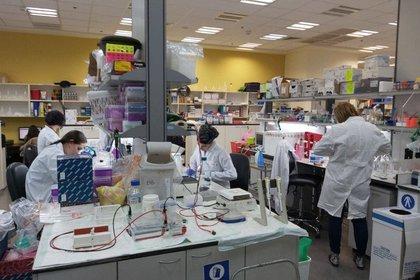 El equipo de biotecnología del instituto MIGAL de Israel donde se está trabajando en una vacuna para tratar el COVID-19. (Foto: cortesía MIGAL)