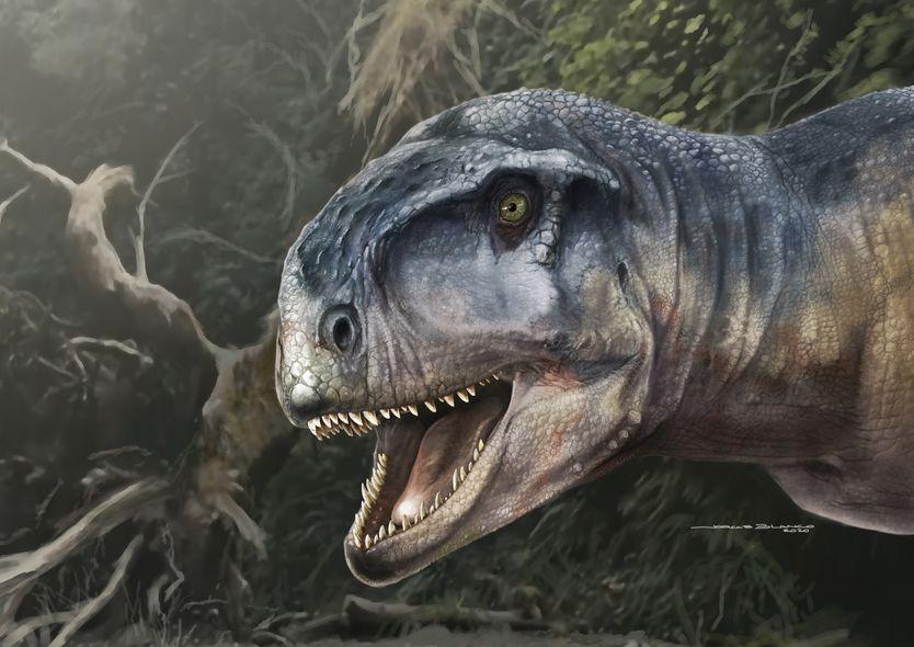 Así era el Llukalkan aliocranianus (Ilustración: Jorge Blanco)