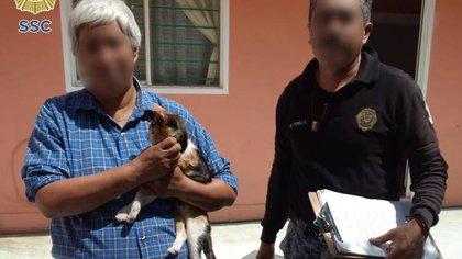 La gatita Camila fue rescatada y entregada a su familia por elementos de la Brigada de Vigilancia Animal (Foto: @SSC_CDMX)