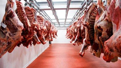 Los expertos recomiendan retirar las carnes 2 horas antes de la heladera y comenzar su preparación para condimentarlas (Shutterstock)
