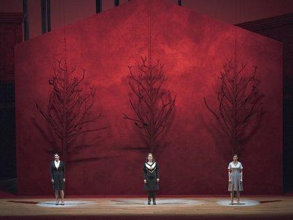 (Prensa Teatro Colón /Máximo Parpagnoli)