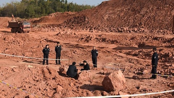 Paleontólogos revisan un sitio de excavación (Archivo)